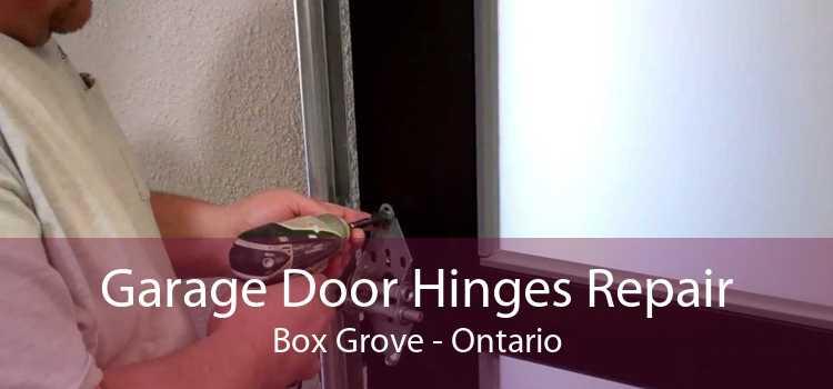 Garage Door Hinges Repair Box Grove - Ontario