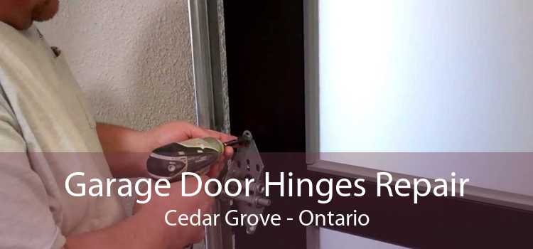 Garage Door Hinges Repair Cedar Grove - Ontario