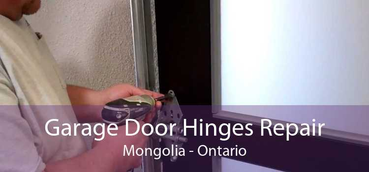 Garage Door Hinges Repair Mongolia - Ontario