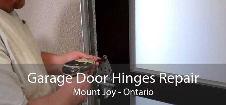 Garage Door Hinges Repair Mount Joy - Ontario