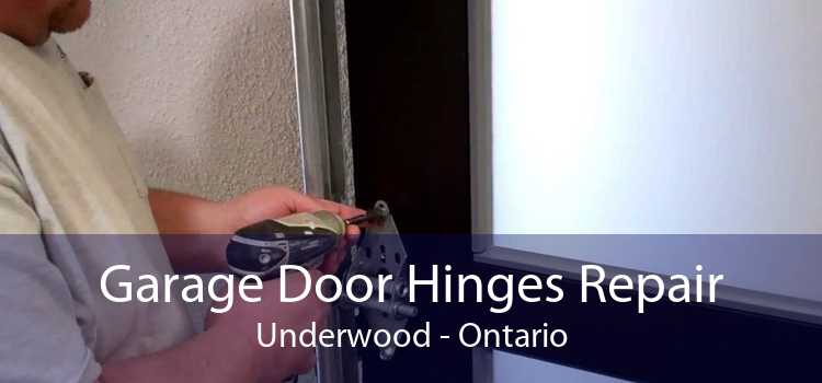 Garage Door Hinges Repair Underwood - Ontario