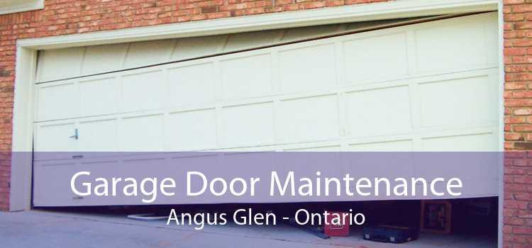 Garage Door Maintenance Angus Glen - Ontario