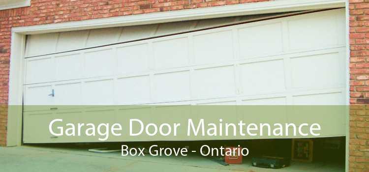 Garage Door Maintenance Box Grove - Ontario