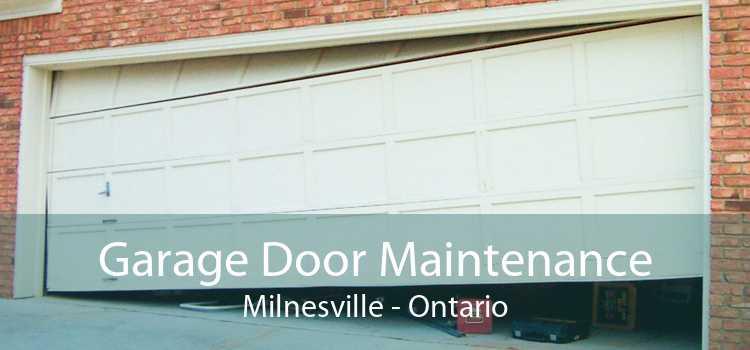 Garage Door Maintenance Milnesville - Ontario