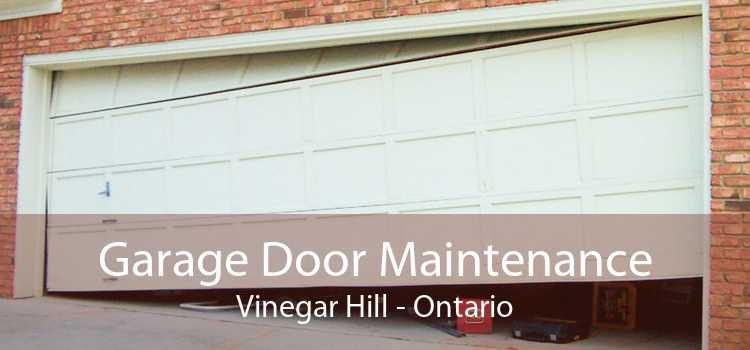 Garage Door Maintenance Vinegar Hill - Ontario