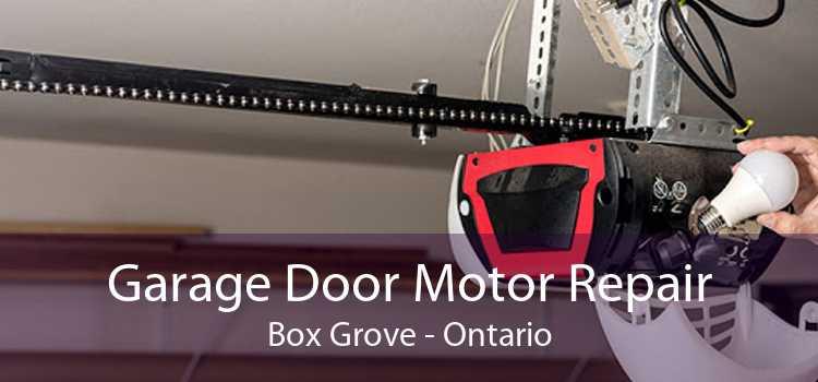 Garage Door Motor Repair Box Grove - Ontario