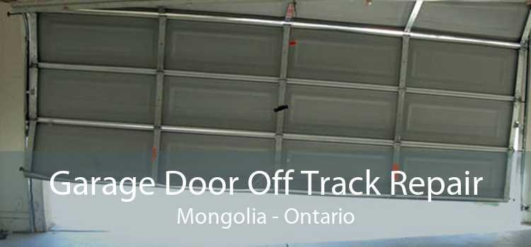 Garage Door Off Track Repair Mongolia - Ontario