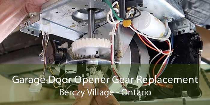 Garage Door Opener Gear Replacement Berczy Village - Ontario