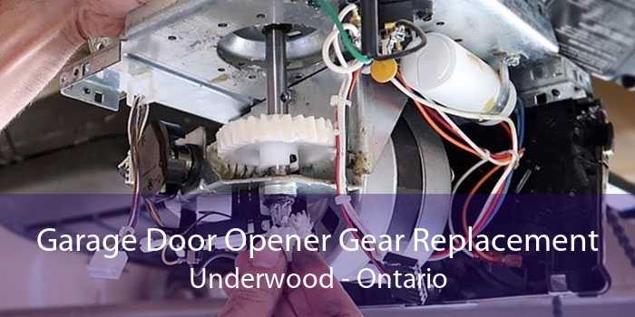 Garage Door Opener Gear Replacement Underwood - Ontario