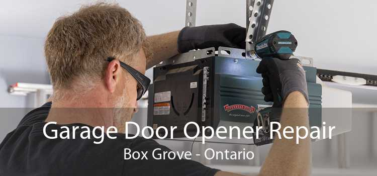 Garage Door Opener Repair Box Grove - Ontario