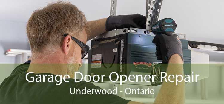 Garage Door Opener Repair Underwood - Ontario