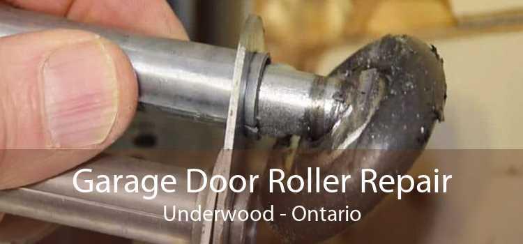 Garage Door Roller Repair Underwood - Ontario