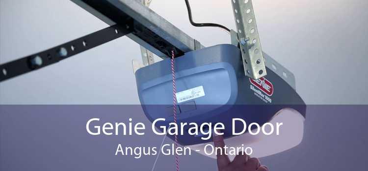 Genie Garage Door Angus Glen - Ontario