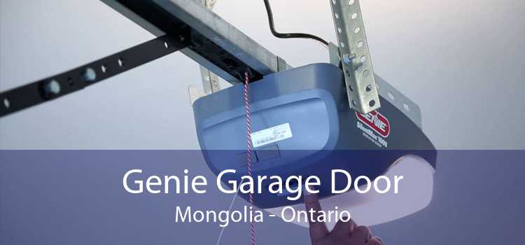 Genie Garage Door Mongolia - Ontario