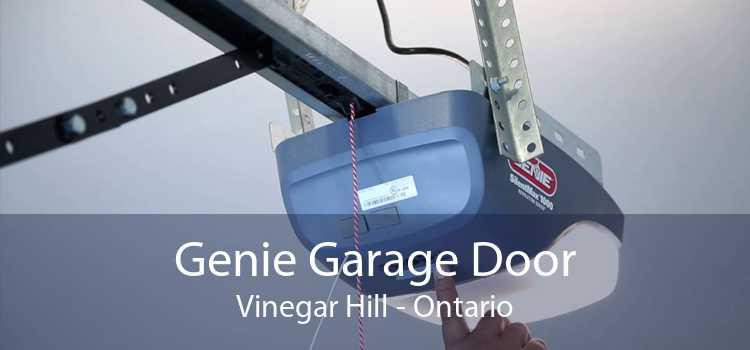 Genie Garage Door Vinegar Hill - Ontario