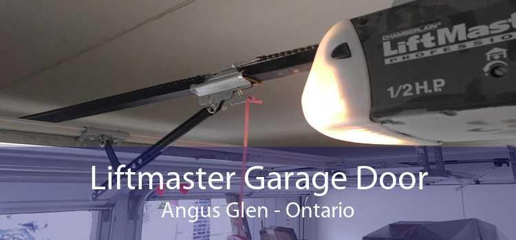 Liftmaster Garage Door Angus Glen - Ontario