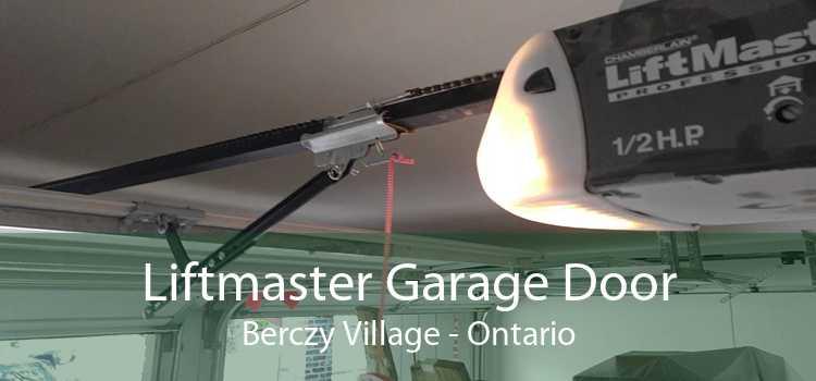 Liftmaster Garage Door Berczy Village - Ontario