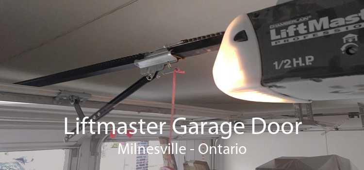 Liftmaster Garage Door Milnesville - Ontario