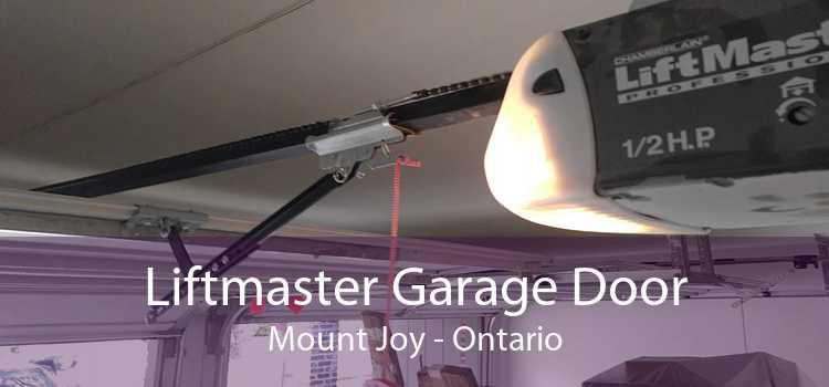 Liftmaster Garage Door Mount Joy - Ontario