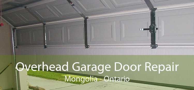 Overhead Garage Door Repair Mongolia - Ontario