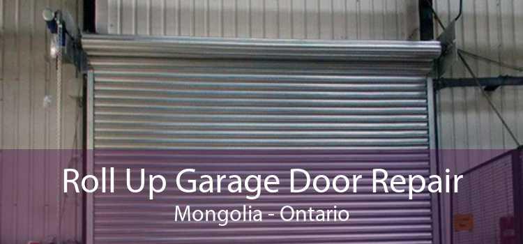 Roll Up Garage Door Repair Mongolia - Ontario